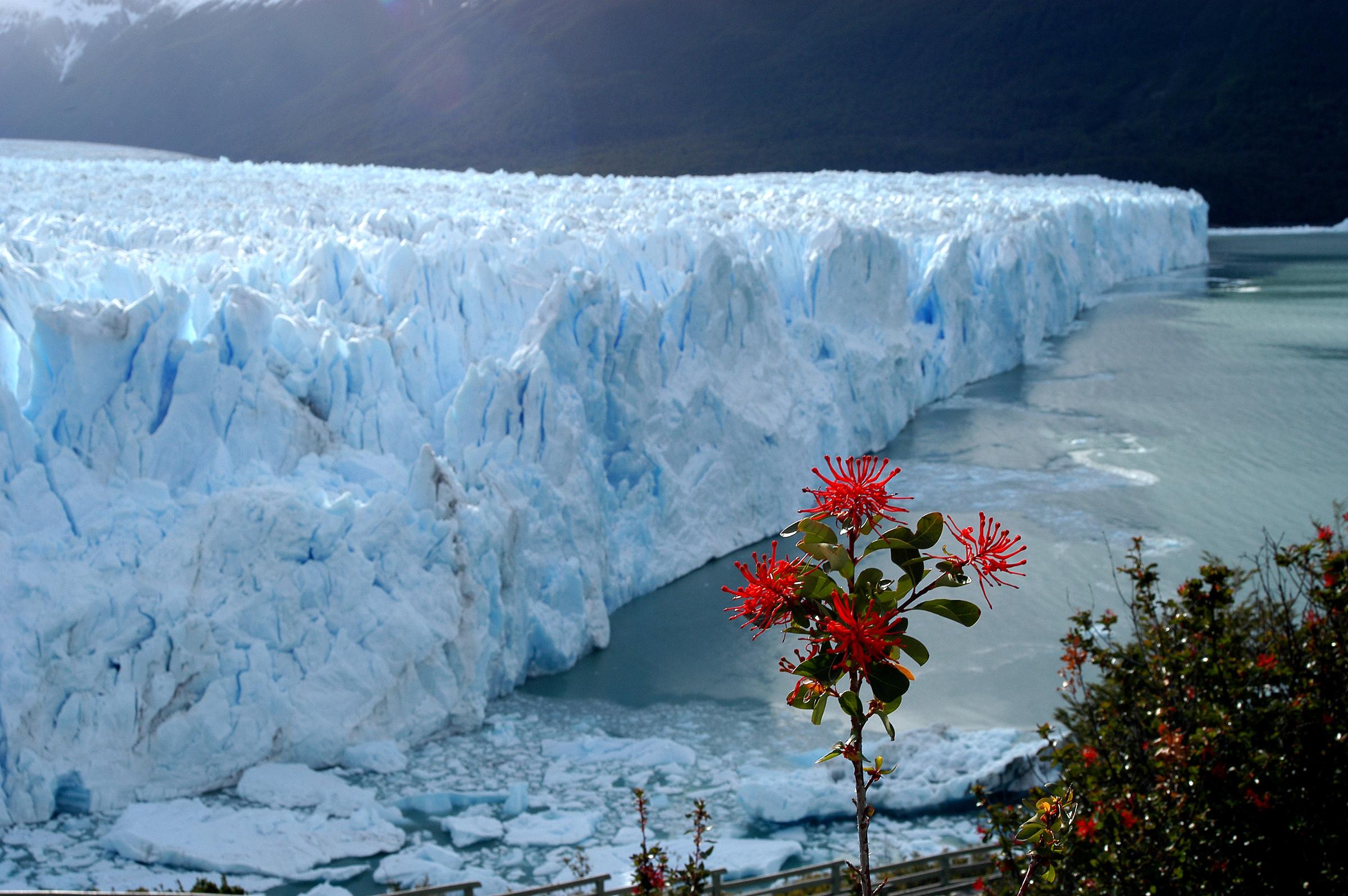 Argentína (Perito Moreno)