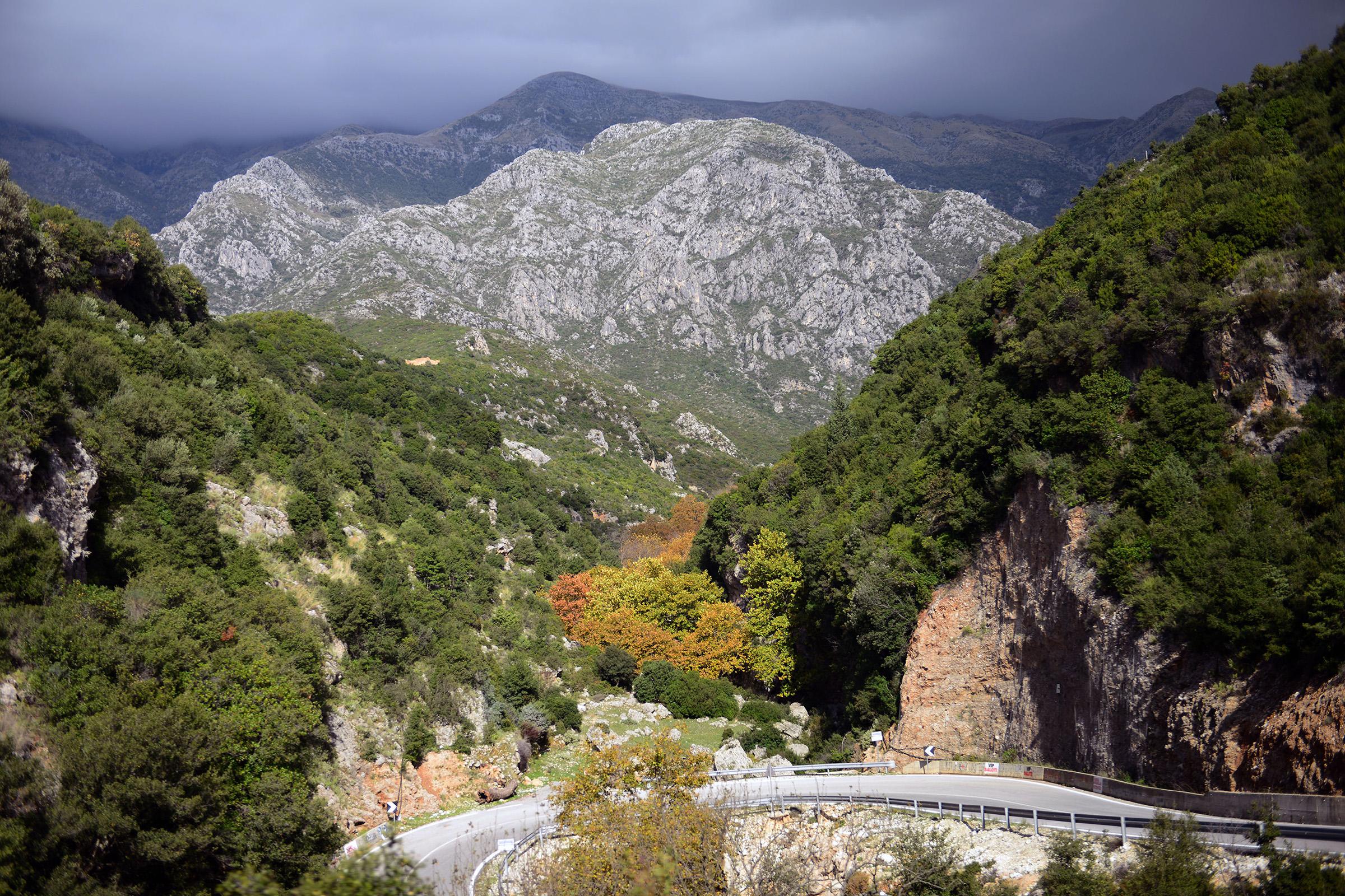 Táj (Albánia)